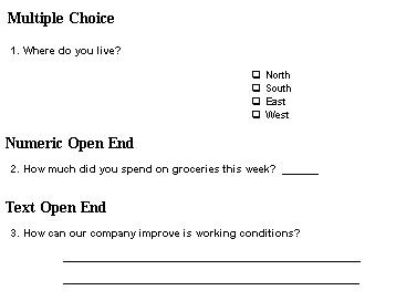 survey design software design a successful survey system. Black Bedroom Furniture Sets. Home Design Ideas